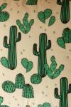 Kaktuszos párna